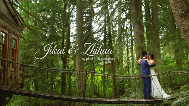 Picture from video of romantic, nature get away wedding shot at Tree House Point wedding venue