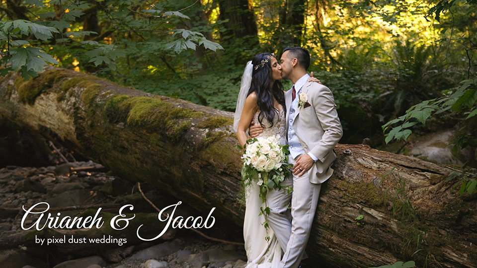 forest twilight inspired wedding tree house point